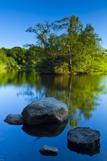England, Northumberland,  Bolam Lake Country Park. von Jason Friend