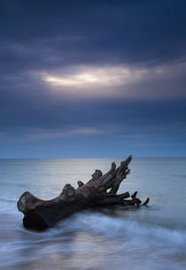 England, Northumberland, Alnmouth. by Jason Friend
