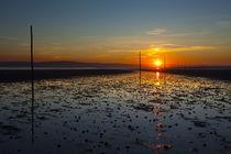 England, Northumberland, Northumberland Heritage Coast. von Jason Friend