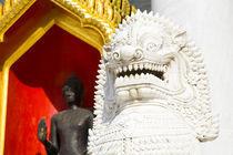 Thailand, Bangkok, Wat Benchamabophit. by Jason Friend