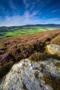 England, Northumberland, Rothbury. von Jason Friend