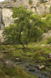 England, Yorkshire, Yorkshire Dales National Park by Jason Friend