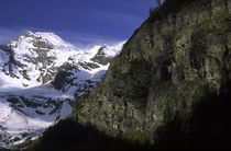 Italy, Valle D'Aosta, Gran Paradiso National Park by Jason Friend