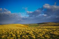 England, Northumberland, Northumberland National Park by Jason Friend