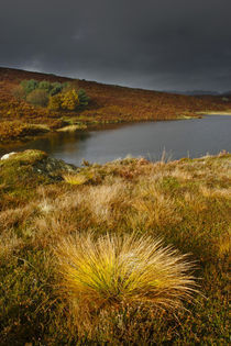 England, Cumbria, Lake District National Park von Jason Friend