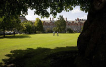 Croquette Game in New Square, Trinity College, Dublin, Ireland von Panoramic Images