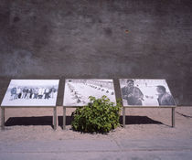 Photos of Nelson Mandela and Walter Sisulu by Panoramic Images