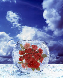 Crystal round vase filled with ice and red roses resting on seashore  by Panoramic Images