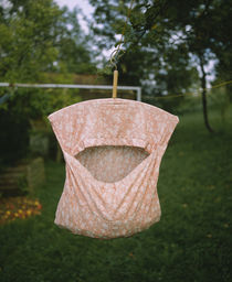 Clothespin container hanging from a clothesline, Baden-Wurttemberg, Germany von Panoramic Images