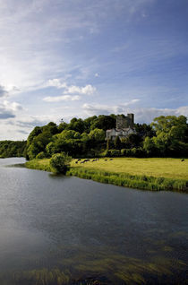 The Blackwater River and Castle, Ballyhooly, County Cork, Ireland von Panoramic Images