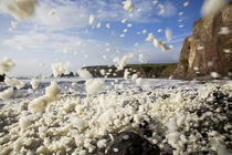 Ballydowane Beach, Copper Coast, County Waterford, Ireland by Panoramic Images