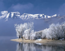 USA, Utah, Deer Creek State Park by Panoramic Images