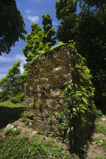 Ruins of colonial mission in a park by Panoramic Images