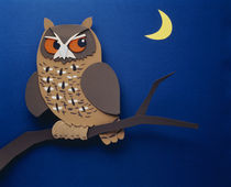 Illustration owl von Panoramic Images