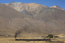 La Trochita narrow gauge steam train von Panoramic Images