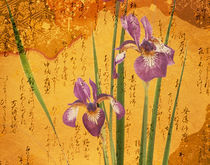 Oriental batik style purple bearded iris  by Panoramic Images