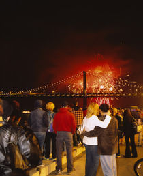 Rear view of a group of people watching a fireworks display by Panoramic Images