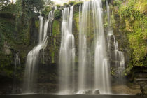 Waterfall in a forest, Llanos De Cortez Waterfall, Guanacaste, Costa Rica by Panoramic Images