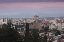 Buildings in a city, Salta, Argentina by Panoramic Images