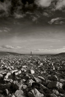 Standing Stone, Monavullagh Mountains, County Waterford, Ireland by Panoramic Images
