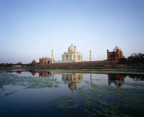 Taj Mahal reflected in the Yamuna River, Agra, Rajasthan, India by Panoramic Images