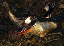 Ducks Over Koi 1 by Eye in Hand Gallery