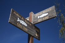 Low angle view of street signs, Junin De Los Andes, Lake District, Argentina by Panoramic Images