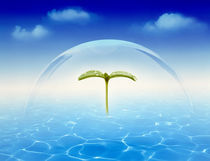 Leaf sprig floating under clear dome above rippling water clouds in blue sky von Panoramic Images