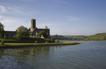 14th Century Timoleague Abbey, Timoleague, County Cork, Ireland by Panoramic Images