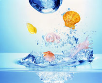 Multicolored seashells and water bubbles in churning water von Panoramic Images