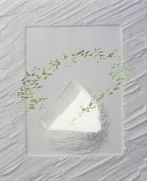 Plaster frame with triangular opening with vine growing from center by Panoramic Images