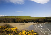 Stradbally Cove, The Copper Coast, Co Waterford, Ireland by Panoramic Images