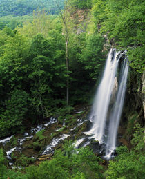 High angle view of Falling Spring Falls by Panoramic Images