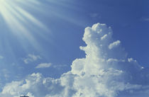 Cumulus clouds in the sky by Panoramic Images