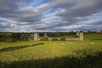 15th Century Walls around Augustinian Monestary, Kells, County Kilkenny, Ireland von Panoramic Images