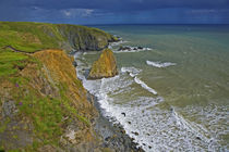 Coastal Scenery Near Bunmahon, The Copper Coast, County Waterford, Ireland by Panoramic Images