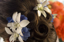 Close-up of flowers in a bride's hair, Bainbridge Island, Washington State, USA von Panoramic Images
