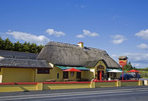 The Sweep Thatched Pub, Kilmeaden, County Waterford, Ireland by Panoramic Images