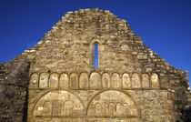 Romaneque Carvings on St Declan's Cathedral, Ardmore, Co Waterford, Ireland by Panoramic Images