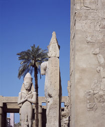Statues and hieroglyphics at an archaeological site von Panoramic Images