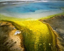 USA Wyoming Yellowstone National Park by Panoramic Images