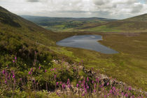 The Nire Valley from the Comeragh Mountains, County Waterford, Ireland by Panoramic Images