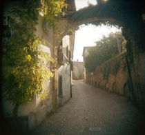 Historic buildings along a street, Neive, Cuneo Province, Piedmont, Italy by Panoramic Images