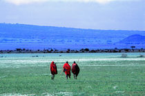 Maasai on Serengeti Africa by Panoramic Images