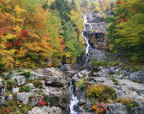 USA, New Hampshire, White Mountains National Forest von Panoramic Images