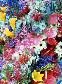 Collage of multi colored flowers by Panoramic Images