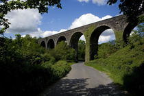 Disused Railway Viaduct, Near Stradbally, County Waterford, Ireland von Panoramic Images