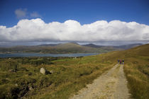 Hikers on Boreen, Bear Island, County Cork, IrelandModel Released von Panoramic Images