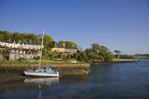Strangford Harbour, Co Down, Ireland by Panoramic Images