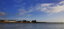 View to Abbeyside, With Flying Brent Geese, Dungarvan, County Waterford, Ireland by Panoramic Images